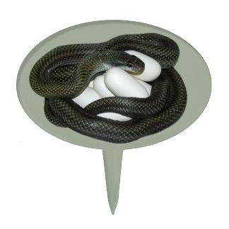 ¡Madre japonesa de la serpiente de rata, hermosa y Palillos De Tarta