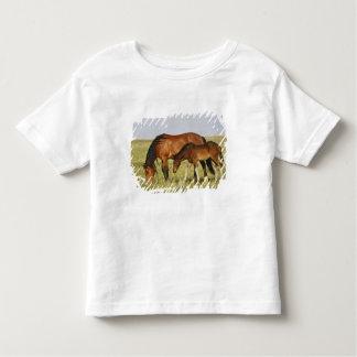 Madre salvaje del caballo salvaje del caballus del t-shirt