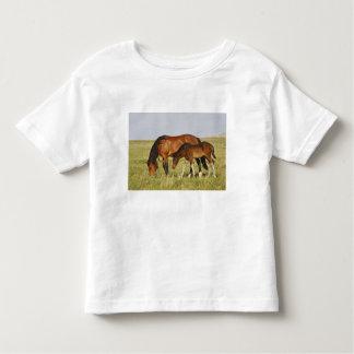 Madre salvaje del caballo salvaje del caballus del t shirts