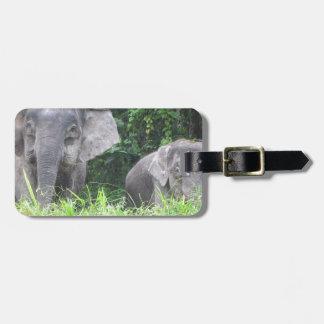 Madre y bebé del elefante etiquetas maleta