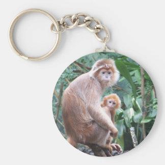 Madre y bebé del mono del Langur Llavero Redondo Tipo Pin