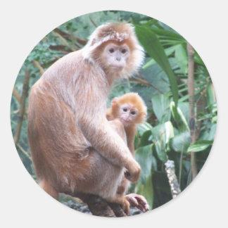 Madre y bebé del mono del Langur Pegatina Redonda