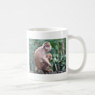 Madre y bebé del mono del Langur Taza