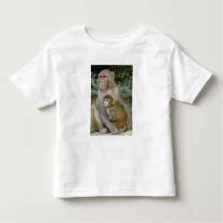 Madre y bebé del mulatta del Macaca de los Camisas