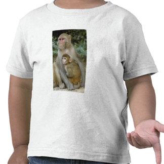 Madre y bebé del mulatta del Macaca de los Camiseta