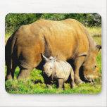 madre y becerro del rinoceronte tapetes de ratón