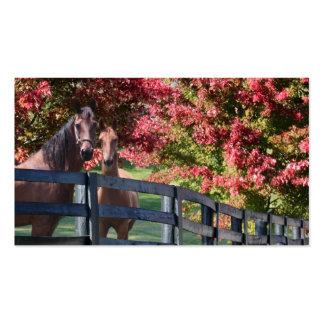 Madre y caballo joven plantillas de tarjetas de visita