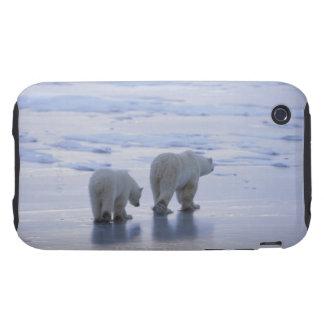 Madre y Cub del oso polar iPhone 3 Tough Cobertura