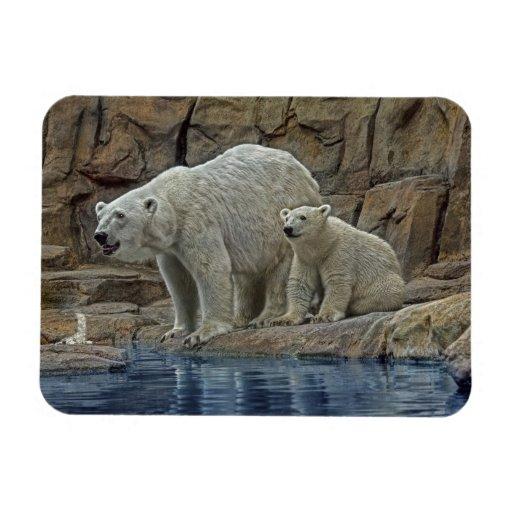 Madre y Cub del oso polar Imanes Flexibles