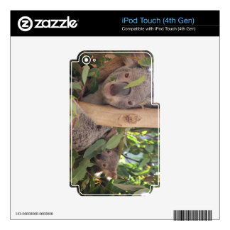 Madre y niño de la koala iPod touch 4G calcomanía
