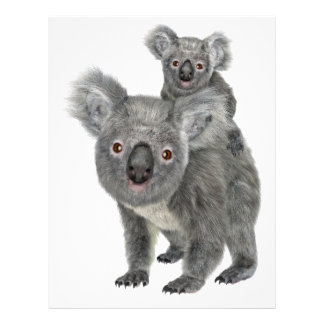 Madre y niño de la koala plantilla de membrete
