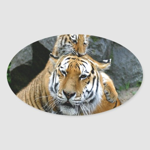 Madre y tigres incondicionales del amor pegatina ovalada