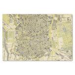 """Madrid 10"""" X 15"""" Tissue Paper"""