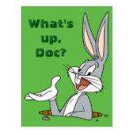 Madriguera de conejo del ™ de BUGS BUNNY Postal