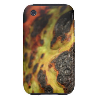 Madrona Tough iPhone 3 Cases