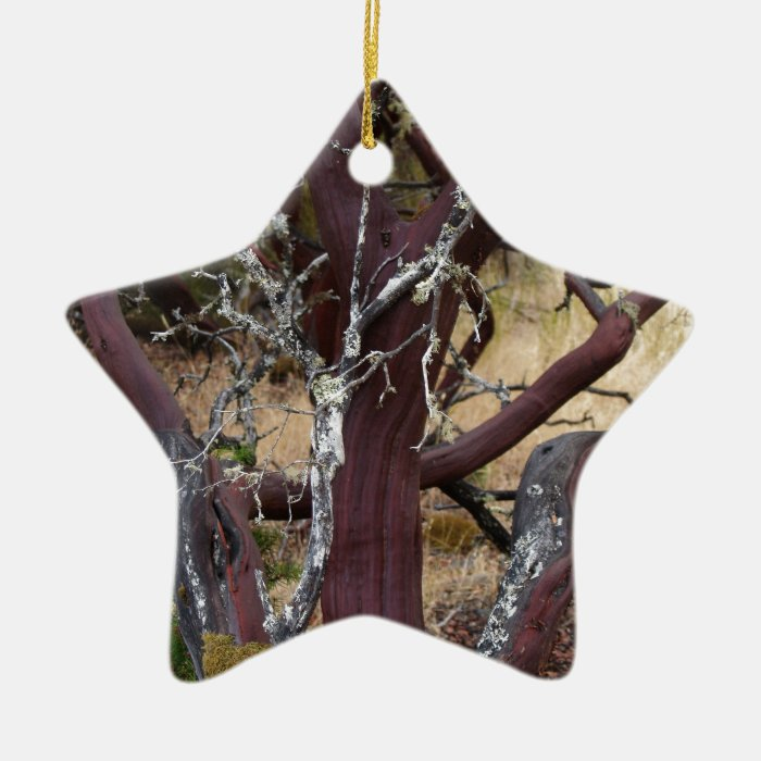 Madrone Bark Ceramic Ornament