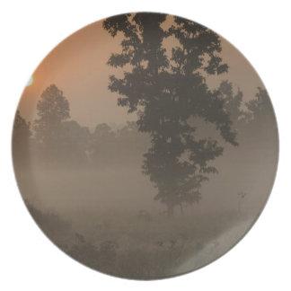 Madrugada, sol naciente y niebla de tierra platos de comidas
