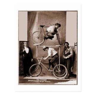 Mae Gordon's Original Insane Moving Pedestal Postcard