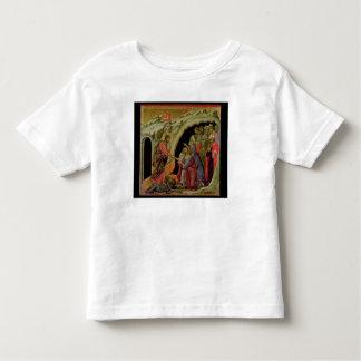 Maesta: Pendiente en el limbo, 1308-11 Camisas