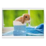 mag in rabbit ver.3 グリーティング・カード