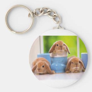 mag in rabbits basic round button keychain