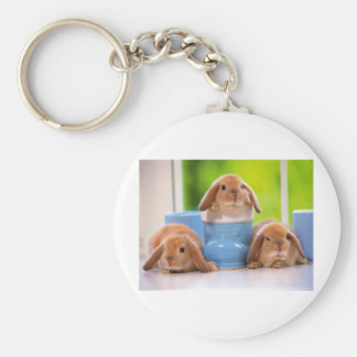 mag in rabbits key chain