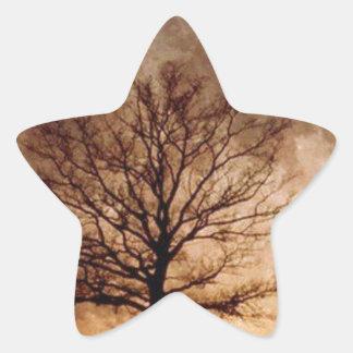 MagamboArt Pegatina En Forma De Estrella