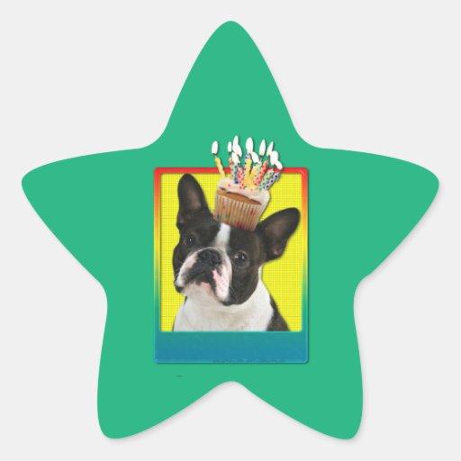 Magdalena del cumpleaños - Boston Terrier Pegatina Forma De Estrella Personalizada