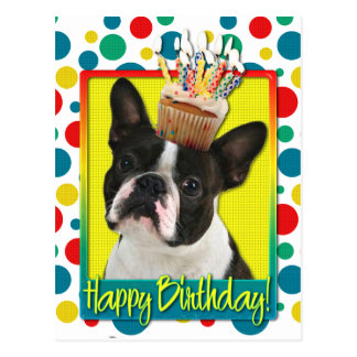 Magdalena del cumpleaños - Boston Terrier Postal