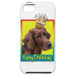 Magdalena del cumpleaños - Irish Setter iPhone 5 Cárcasas