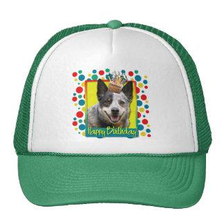 Magdalena del cumpleaños - perro australiano del g gorros