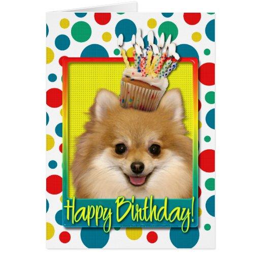 Magdalena del cumpleaños - Pomeranian