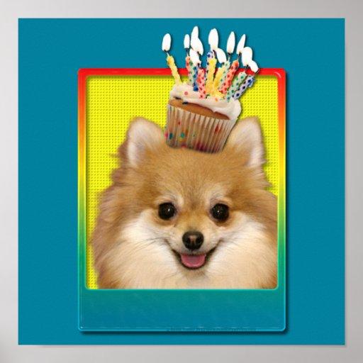 Magdalena del cumpleaños - Pomeranian Póster