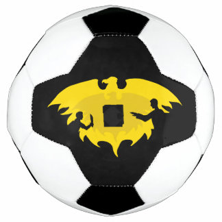 Mage, Thief, and Dayhawk Soccer Ball