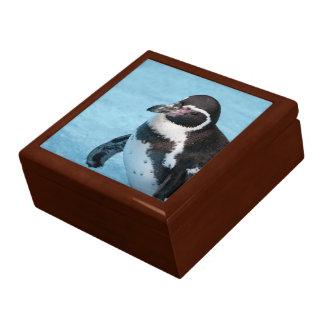 Magellanic Penguin Gift Box