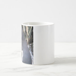 Magellanic Penguin Magic Mug