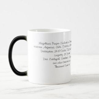 Magellanic Penguin Mug