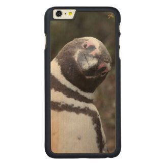 Magellanic Penguin Portrait Carved Maple iPhone 6 Plus Case