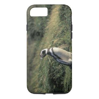 Magellanic Penguin (Spheniscus magellanicus), iPhone 7 Case