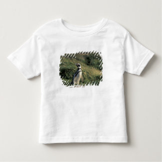 Magellanic Penguin (Spheniscus magellanicus), Toddler T-shirt