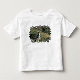 Magellanic Penguin (Spheniscus magellanicus), Toddler T-shirt