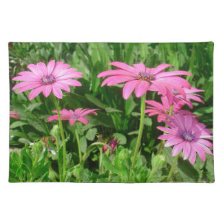 Magenta African Daisies Placemat