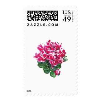 Magenta And White Cyclamen Postage
