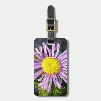 Magenta Aster - A Star of Love and Fidelity Bag Tag