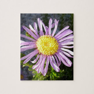 Magenta Aster - A Star of Love and Fidelity Jigsaw Puzzle