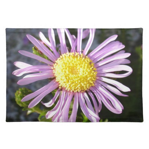 Magenta Aster - A Star of Love and Fidelity Placemats