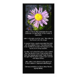 Magenta Aster - A Star of Love and Fidelity Full Color Rack Card