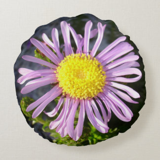 Magenta Aster - A Star of Love and Fidelity Round Pillow
