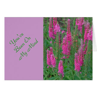 MAGENTA COLORED LUPINE FLOWER CARDS