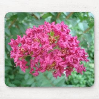 Magenta Crepe Myrtle Blossom Mouse Pad